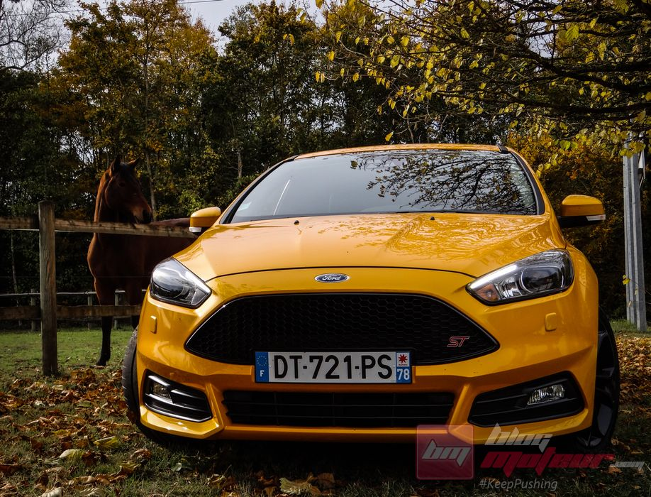 Ford-Focus-ST-250 (28)